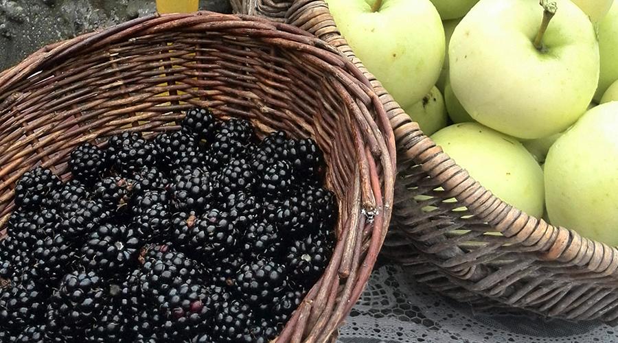 Fruit uit de Betuwe!